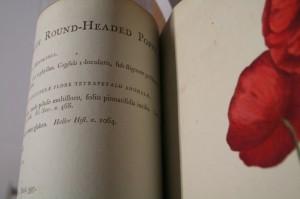 rare book photo